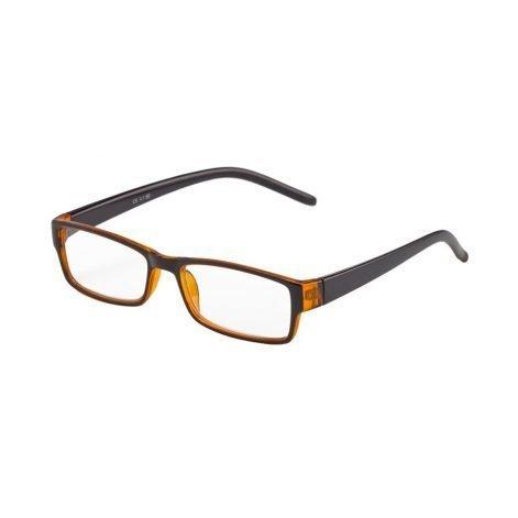 Gafas presbicia 3000