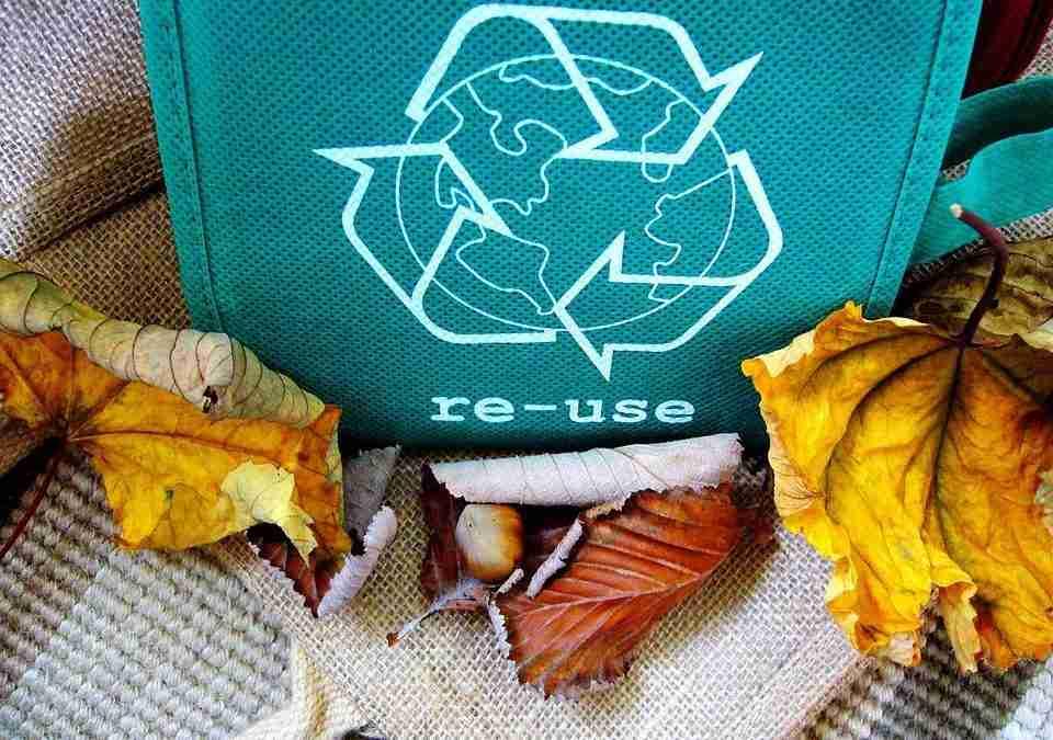 Reduce, reutiliza y recicla. ¿Ya lo haces?